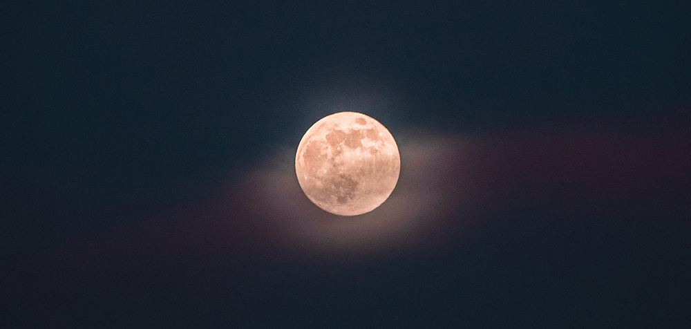 You Swallow a Super Moon and a Doctor You Have Never Met Prescribes Prednisone - Longleaf Review